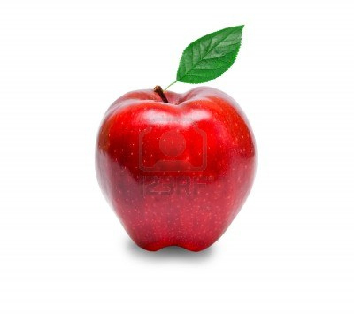 the rotten apple injures its neighbours 274+47 sentence examples: 1 the rotten apple injures its neighbours 2 one rotten apple spoils the whole barrel 3 don't throw away the apple because of the core.