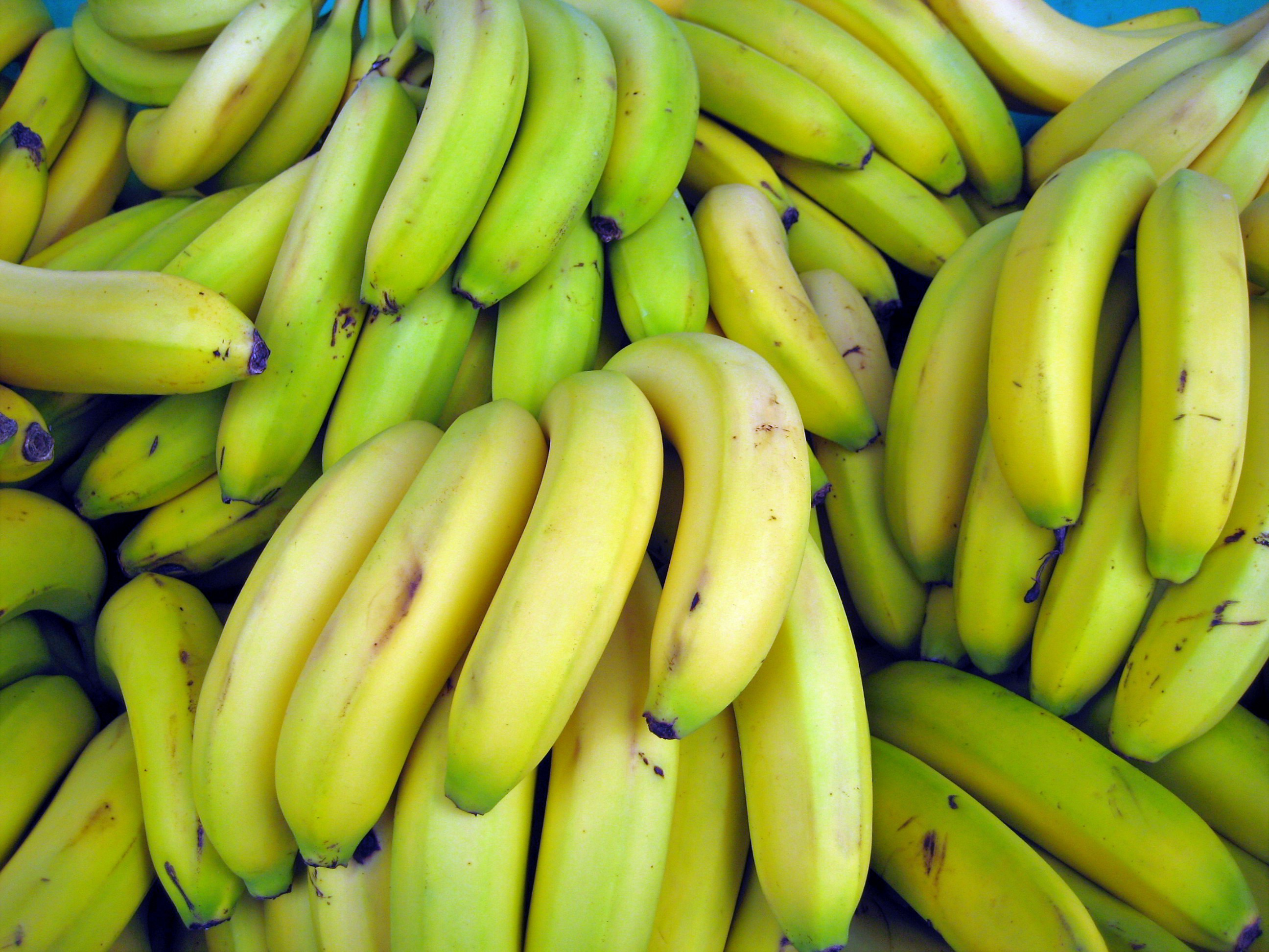 Bananas - 12 photo