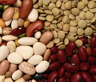 Beans: The meaning of the dream in which you see 'Beans'