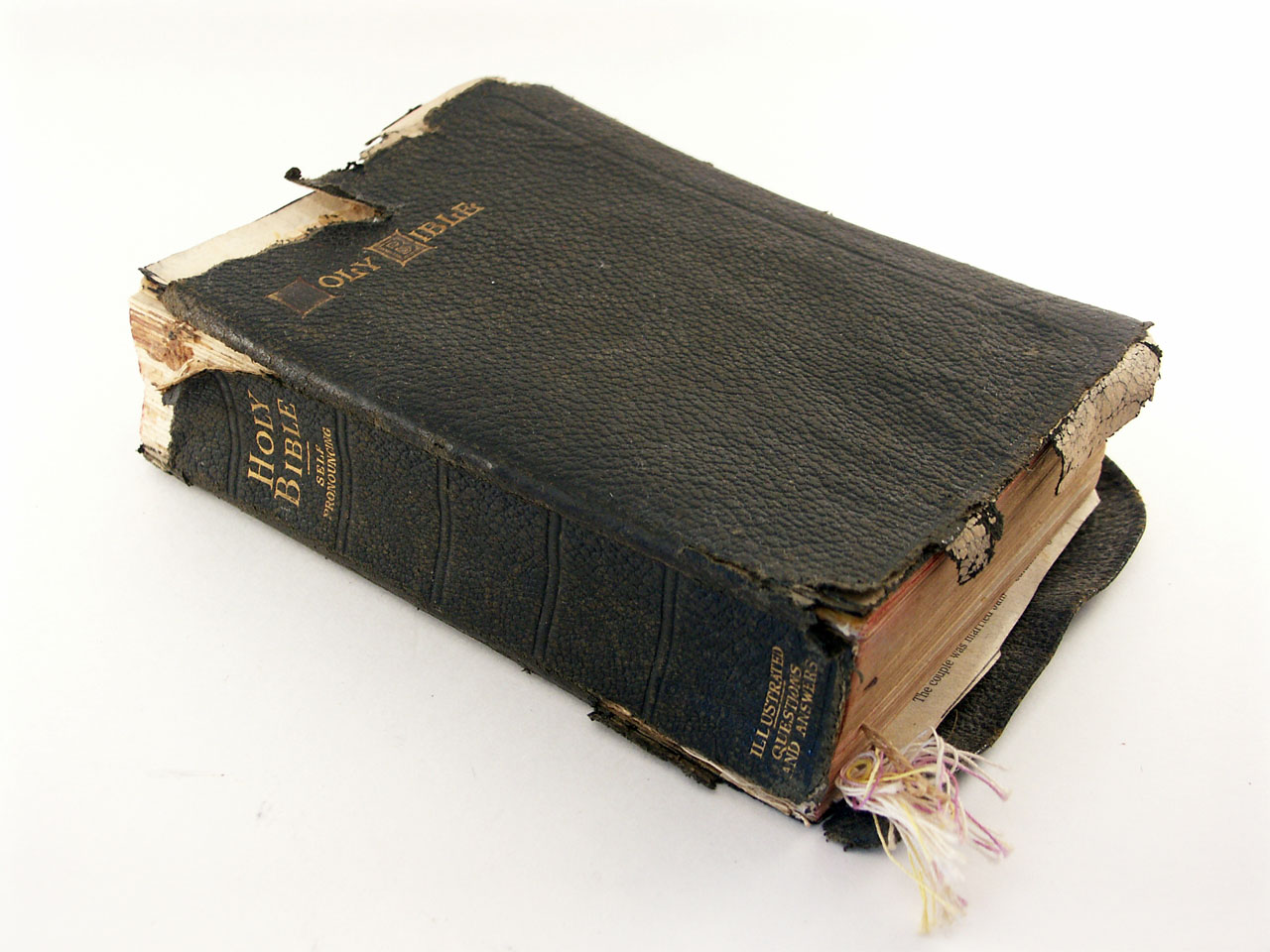Bible the meaning of the dream in which you see bible bible 05 photo biocorpaavc Gallery