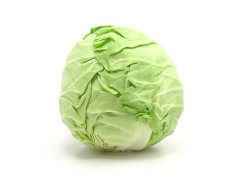 Cabbage - 02 photo