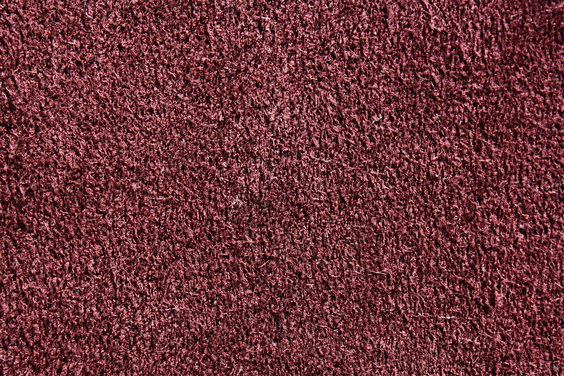 Carpet 04 photo for What is the best carpet to buy