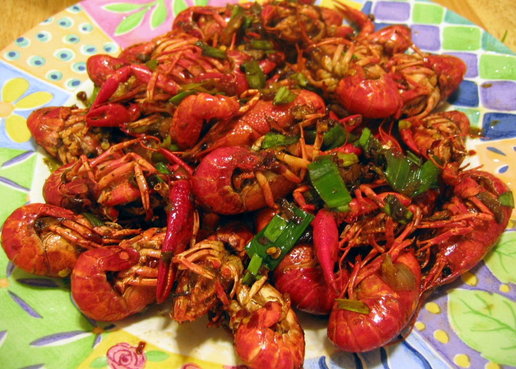 Crawfish - 03 photo