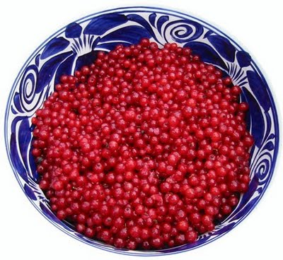Currants - 08 photo