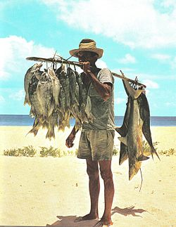 Fisherman - 05 photo
