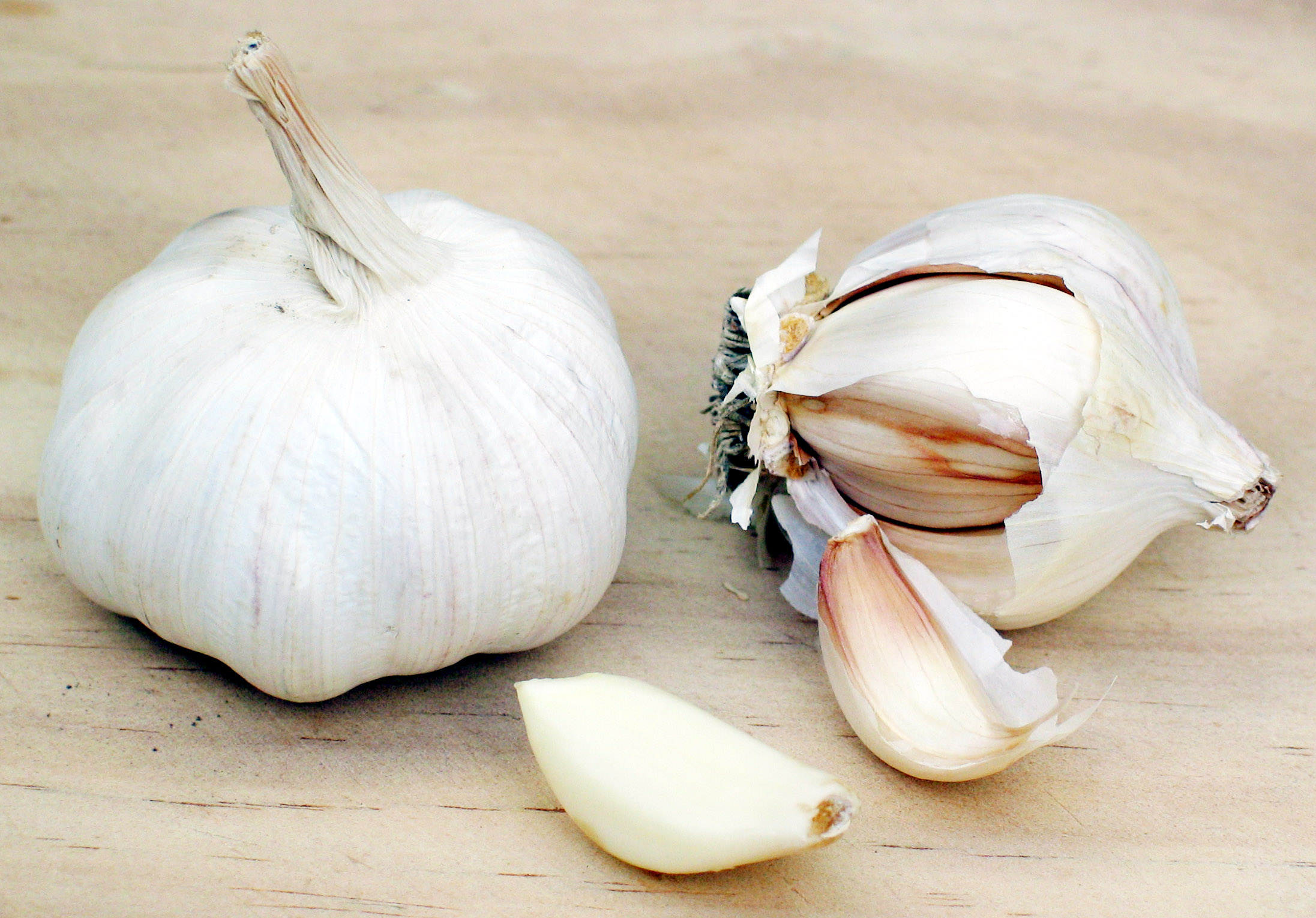 Garlic - 01 photo