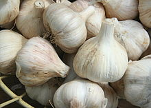 Garlic - 11 photo