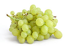 Grapes - 01 photo