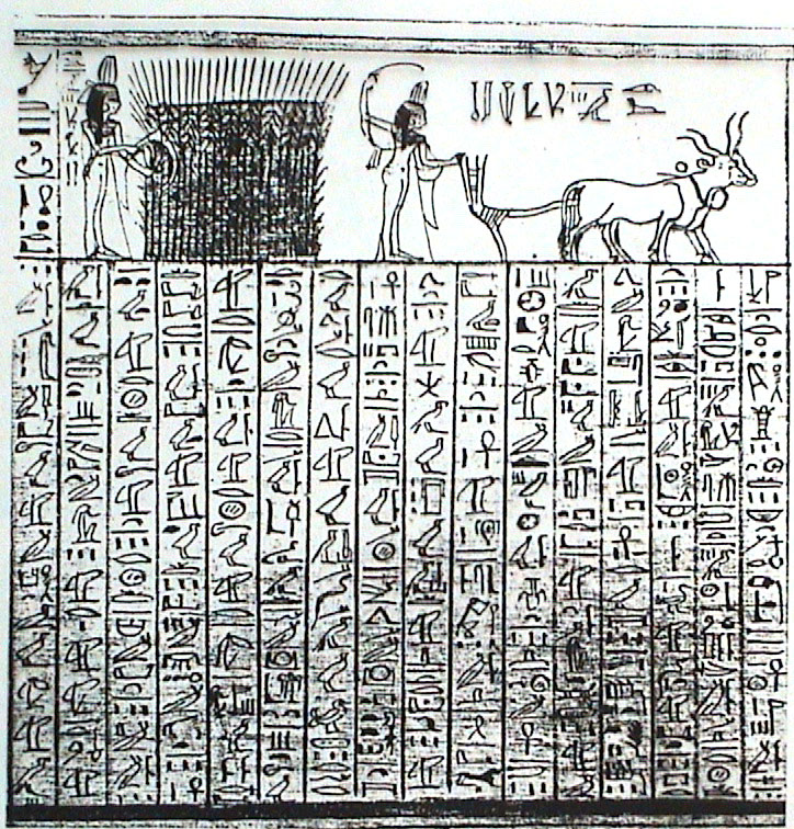 Hieroglyphs - 07 photo