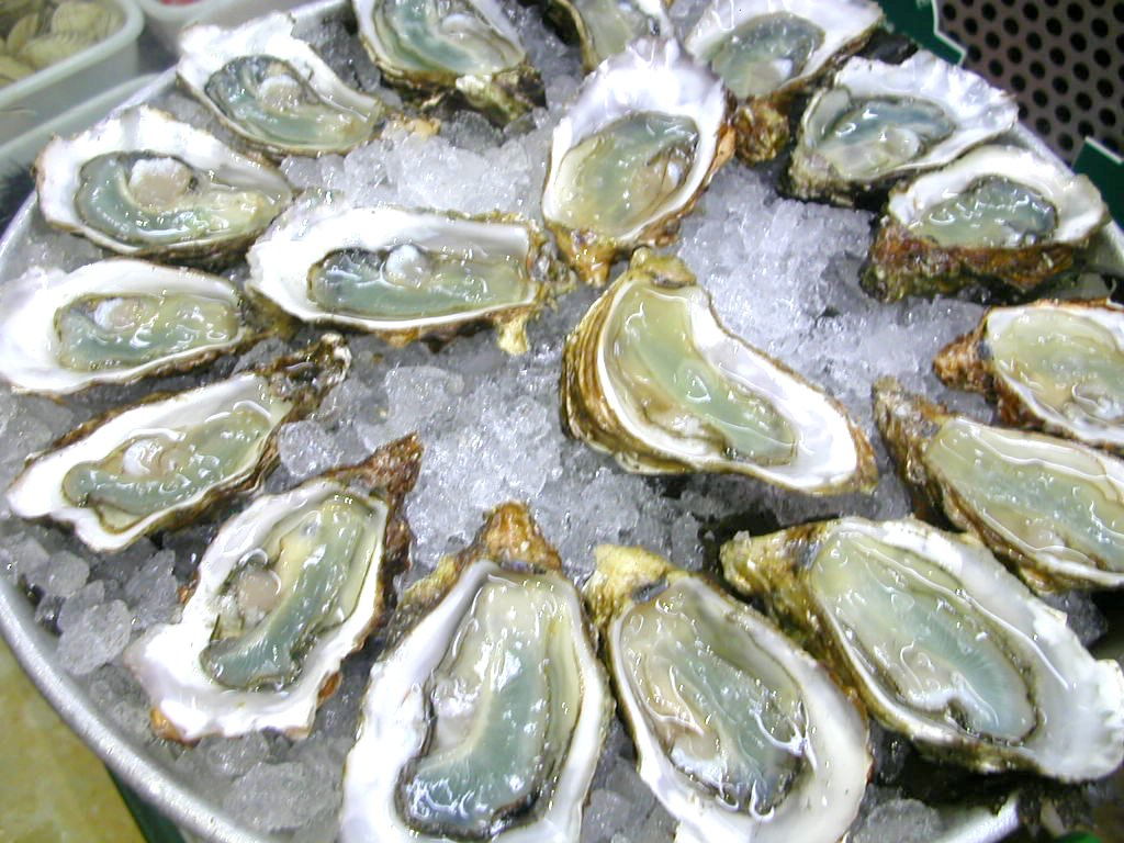 Oysters - 01 photo