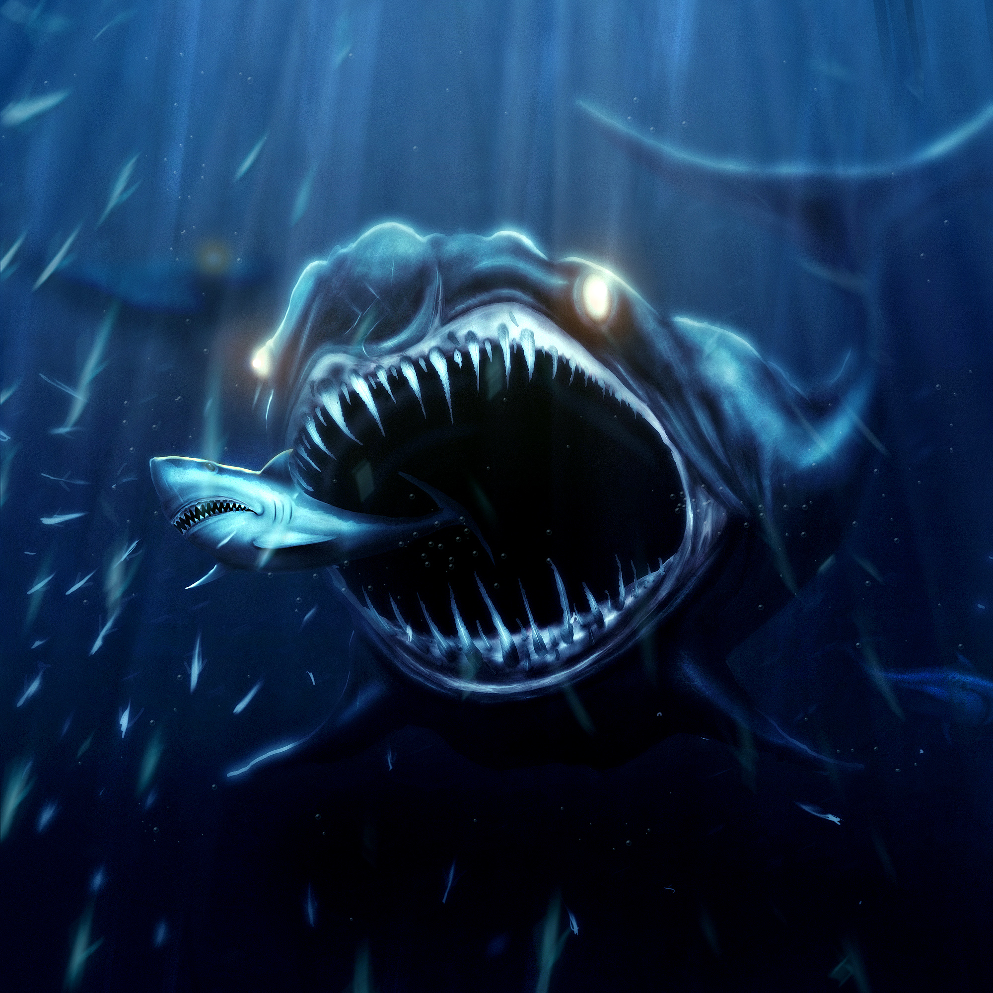 Shark: The meaning of the dream in which you see 'Shark'